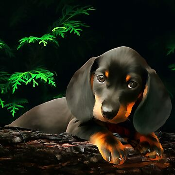 A Dachshund Puppy. (Painting) by cmphotographs