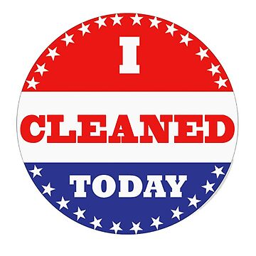 Voting Stickers - I Cleaned Today  by Klay70