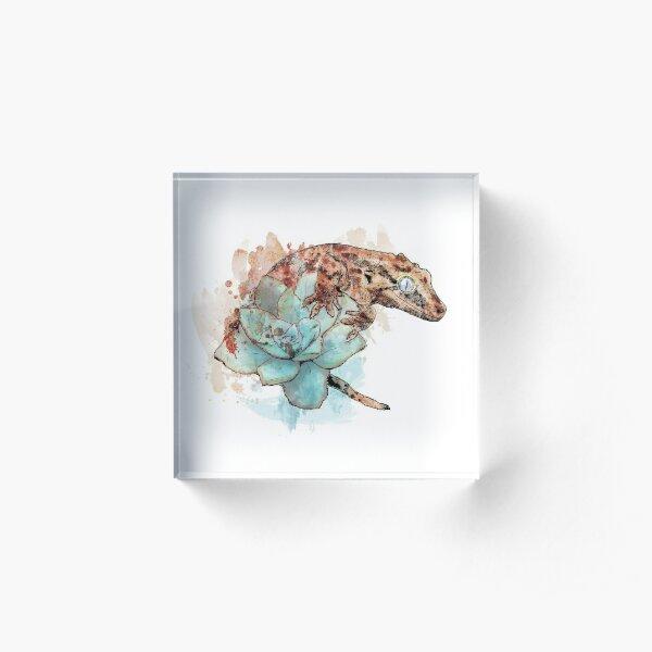 Gargoyle Gecko on Succulent Acrylic Block