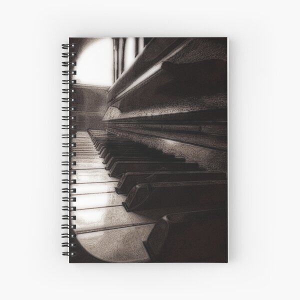 Won't somebody play me? - derivative teatment Spiral Notebook