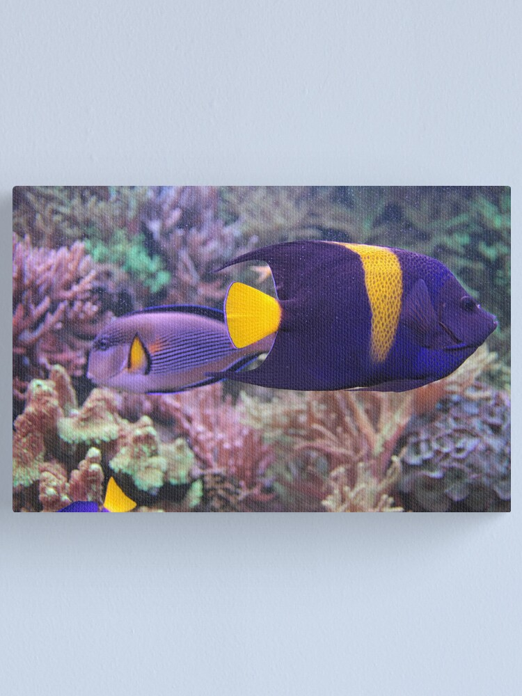 Alternate view of Colorful Fish Canvas Print