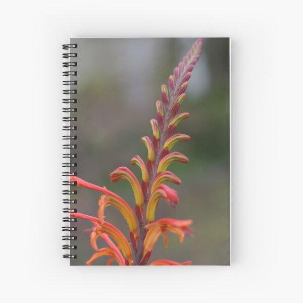 Simplicity Itself Spiral Notebook