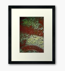 lost in space Framed Print