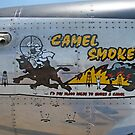 Camel Smoker by Karl R. Martin