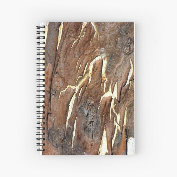Mocha Cafe Latte Spiral Notebook
