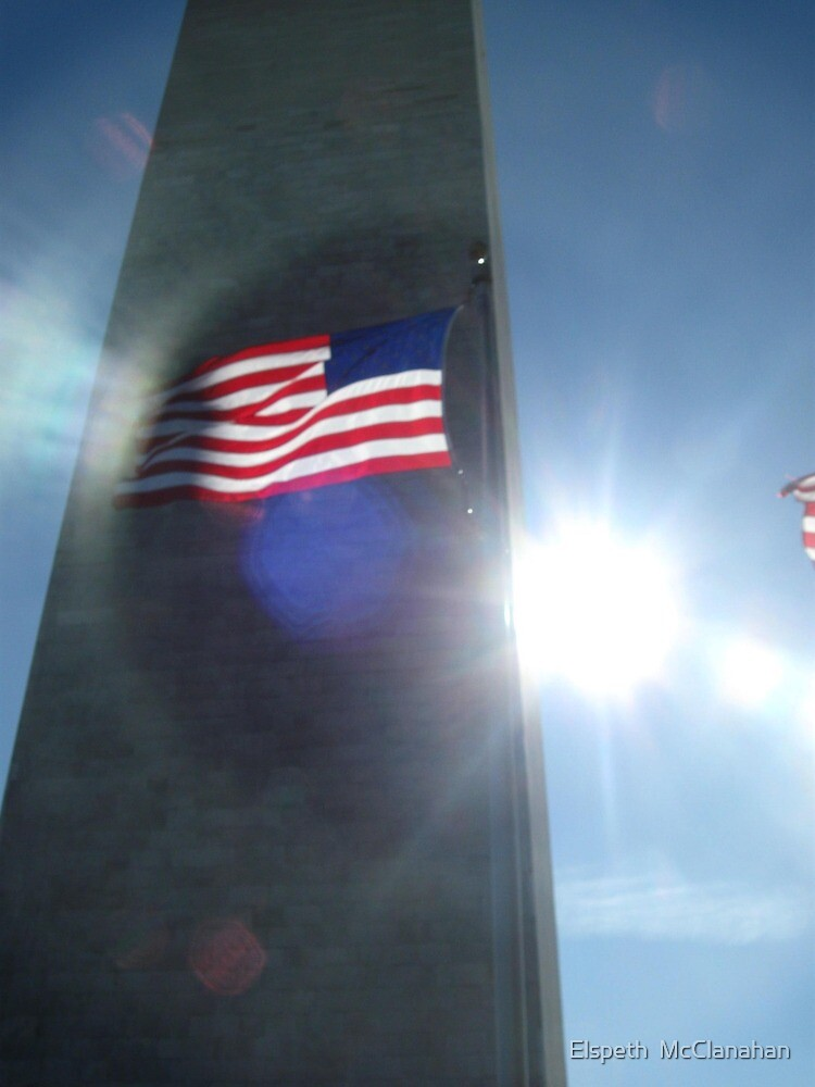 Old Glory at the Washington Monument. by Elspeth  McClanahan