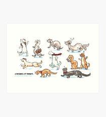 A Business of Ferrets Art Print