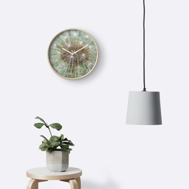 Dandelion Clock by Jennifer J Watson