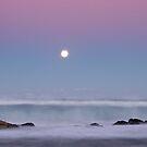 A Light Touch - Friendly Beaches, Tasmania by Liam Byrne