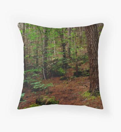 Mt Franklin,Daylesford District Throw Pillow