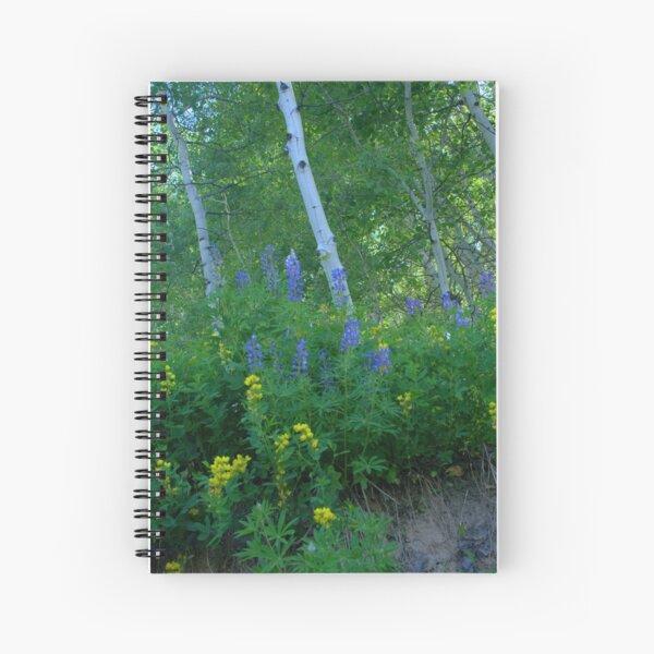 Aspen Forest Along Kebler Pass Spiral Notebook
