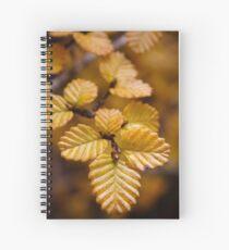 Fagus Spiral Notebook