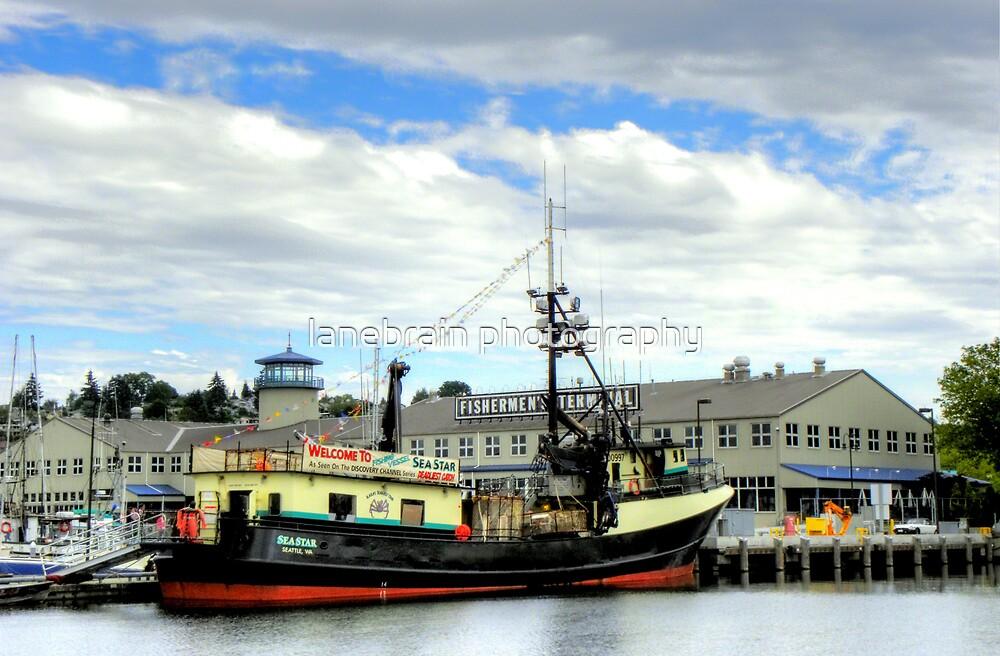 Sea Star ~ HDR/Deadliest Catch ~ Seattle, Washington ~ by lanebrain photography