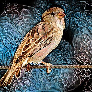 Sparrow by blacknight