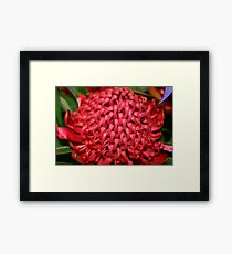 Righteous Red Framed Print