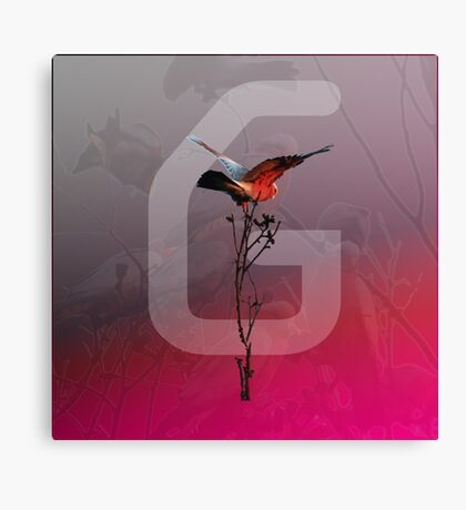 D-White Noise - Galah Merch - Version 3 Canvas Print