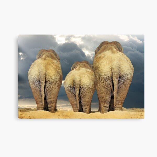 Traveling Elephant Family  Canvas Print