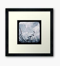 Against the Breeze Framed Print