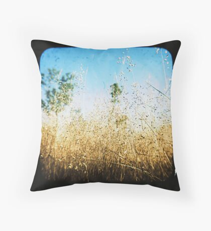 The Land that Was Throw Pillow
