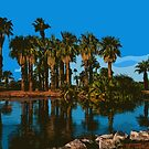 Papago Park Palms by KirtTisdale