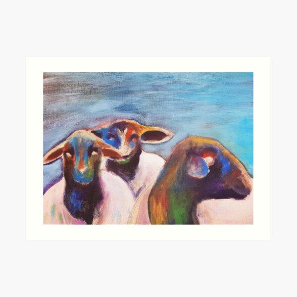 Miniature Sheep Art Print