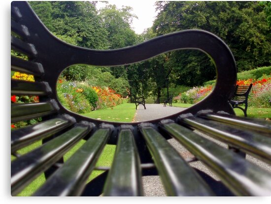 Bench by Paul Finnegan