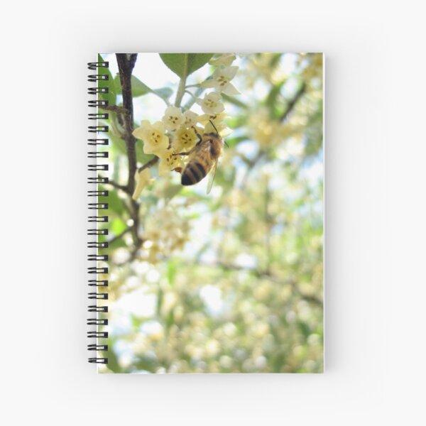 Honey and Olives Spiral Notebook