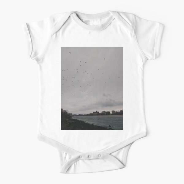 #bird #sky #storm #tree #goose #weather #water #city #winter #nature #lake #colorimage #copyspace #modeoftransport #motion #nopeople #flying #airvehicle #lightnaturalphenomenon, Flock, birds Short Sleeve Baby One-Piece