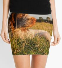 Spinone Puppy Sunset Mini Skirt