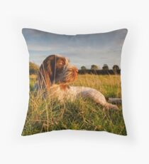 Spinone Puppy Sunset Floor Pillow