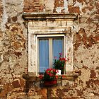 Antique window with red flowers by Anna Lemos