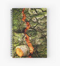 FISSURE Spiral Notebook