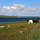 Berneray: Rural Living by Kasia-D
