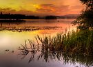 Lake of Menteith by David Mould