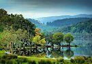 Loch Ard, Autumn starts in the Glen.. by David Mould