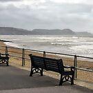 Empty Seats At Lyme Regis Seafront by Susie Peek