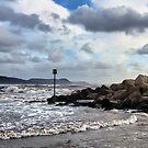 Stormy Seas At Lyme Regis by Susie Peek