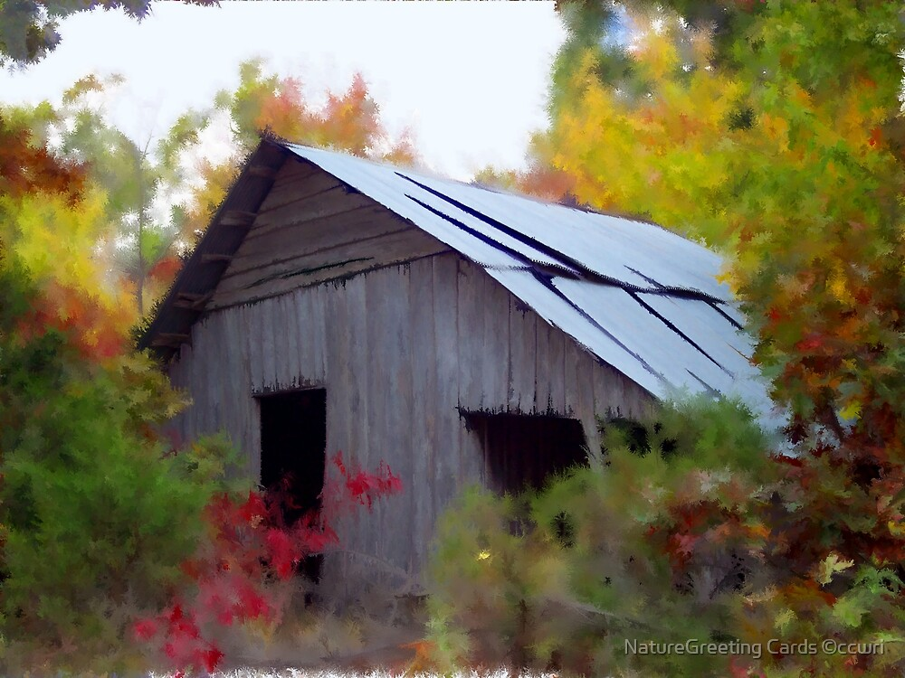 Autumn Whimsie by NatureGreeting Cards ©ccwri