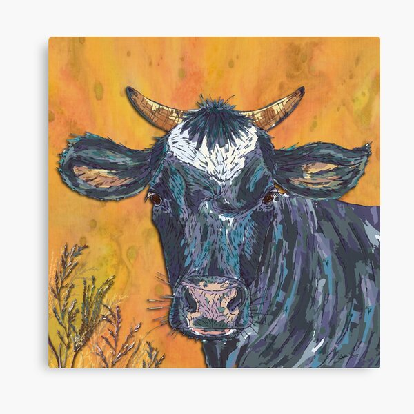 The Cow's Nose Canvas Print