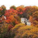 Autumn Embrace by Jessica Jenney