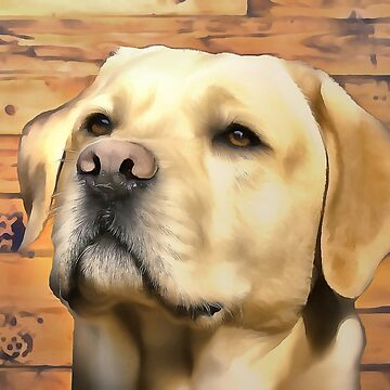 A Labrador. (Painting) by cmphotographs