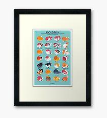 Goldfish Breed Poster Framed Print