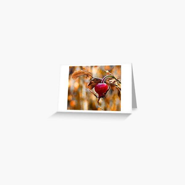 Autumn Rosehip Greeting Card