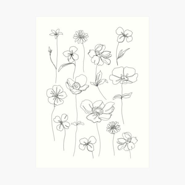 Ilustración floral botánica - Botanicals White Lámina artística