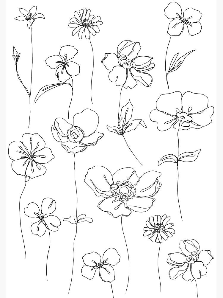 Botanical floral illustration - Botanicals White by TheColourStudy