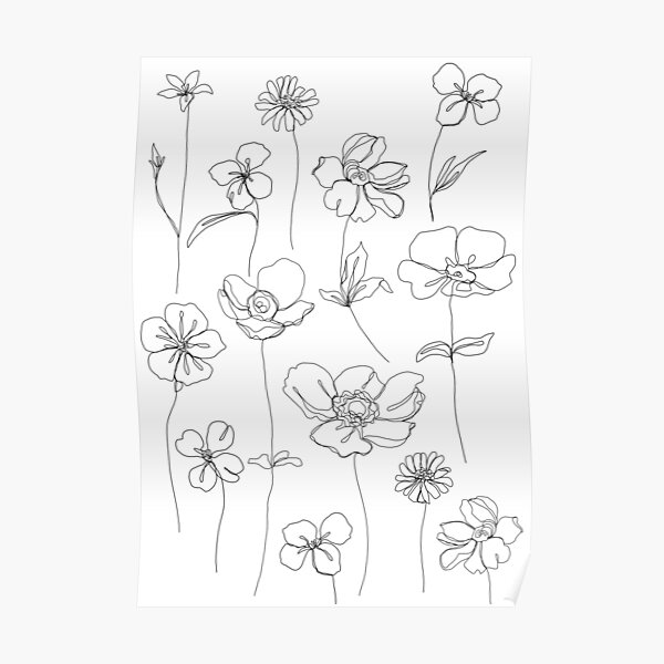 Botanical floral illustration - Botanicals White Poster