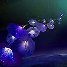 Cosmic Sound by Igor Zenin