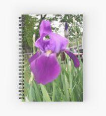 Purple Bearded Iris Spiral Notebook