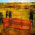 behind the church bench by Sonia de Macedo-Stewart