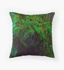 """Where the wild fern grows"" in Snoqualmie Eden Throw Pillow"